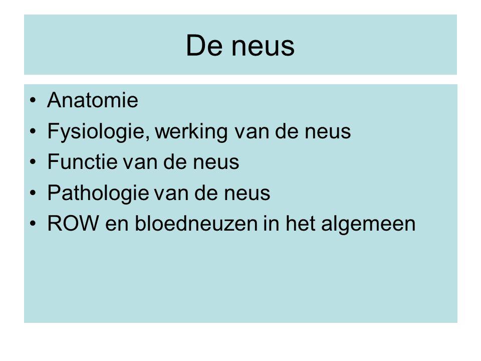De neus Anatomie Fysiologie, werking van de neus Functie van de neus Pathologie van de neus ROW en bloedneuzen in het algemeen