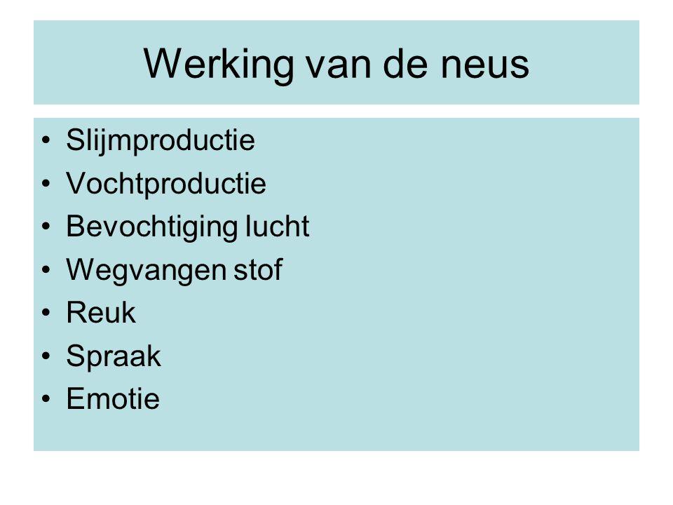 Werking van de neus Slijmproductie Vochtproductie Bevochtiging lucht Wegvangen stof Reuk Spraak Emotie
