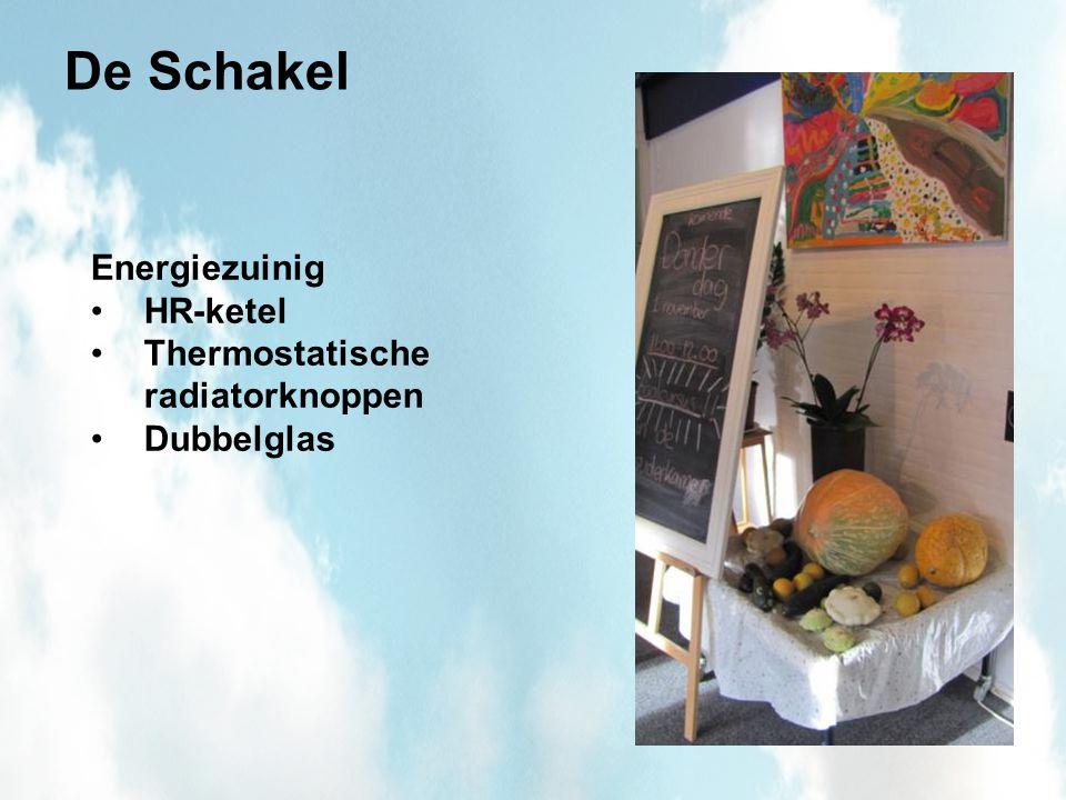 De Schakel Energiezuinig HR-ketel Thermostatische radiatorknoppen Dubbelglas