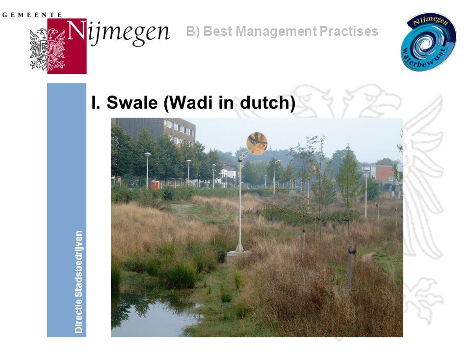 Directie Stadsbedrijven I. Swale (Wadi in dutch) B) Best Management Practises