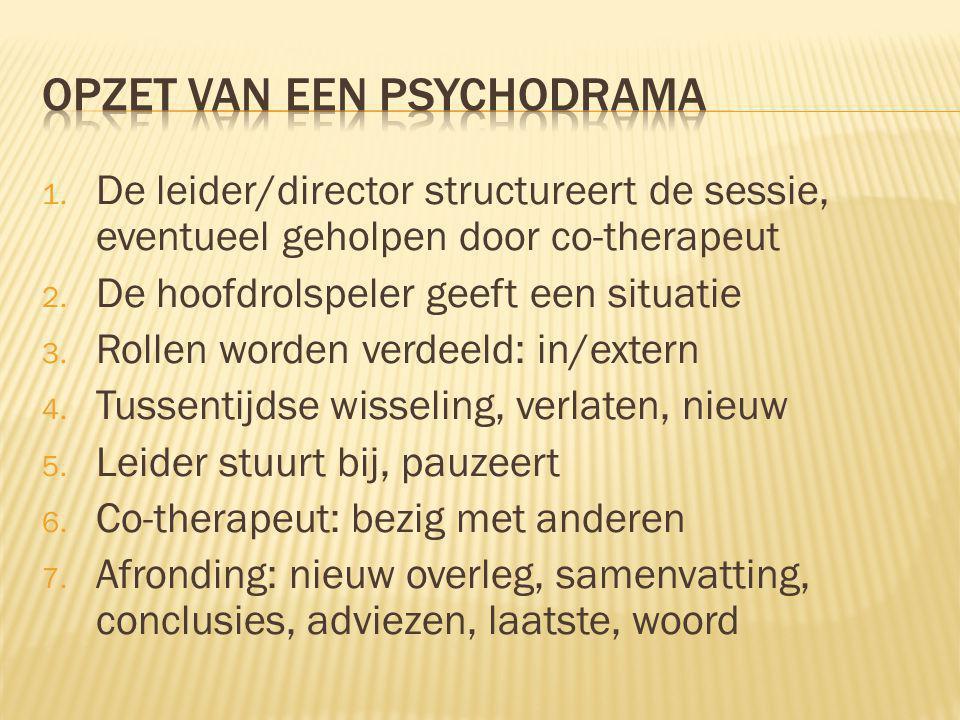 1.De leider/director structureert de sessie, eventueel geholpen door co-therapeut 2.