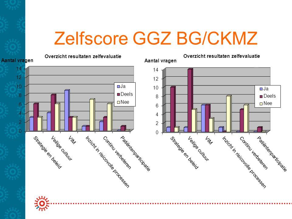 Scores VMS en totaalscore Score Breburg Groep op basiselementen 1.Beleid en strategie (50% x 25%) 12,5% 2.Veilige cultuur (37% x 25%) 9,25% 3.VIM (60% x 15%) 9,0% 4.PRI (11% x 15%) 1,6% 5.Continu verbeteren (22% x 5%) 1,1% 6.Patiëntenparticipatie (50% x 15%) 7,5% --------------------------------------------------------------------- Totaalscore: 41%