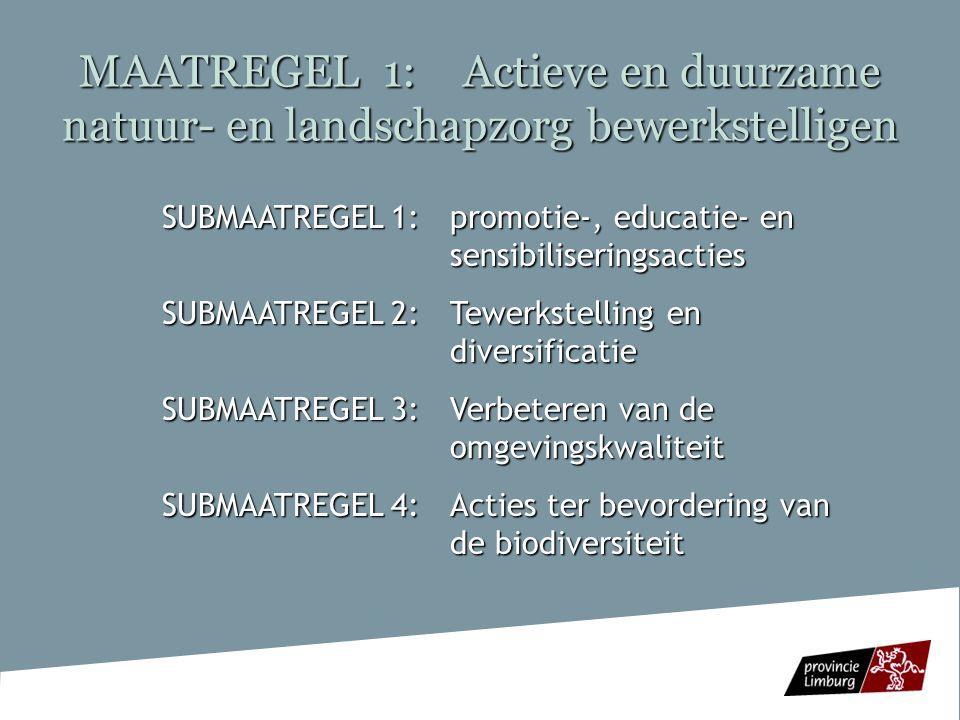 MAATREGEL 2: Het verhogen en versterken van de leefbaarheid van plattelandsdorpen SUBMAATREGEL 1: Het versterken van het fysieke en sociale woonklimaat SUBMAATREGEL 2: Het stimuleren van economische diversificatie/ondernemerschap SUBMAATREGEL 3:Het instandhouden en verbeteren van flexibele, toegankelijke en aangepaste zorg voor specifieke doelgroepen SUBMAATREGEL 3:Het instandhouden en verbeteren van flexibele, toegankelijke en aangepaste zorg voor specifieke doelgroepen (maatschappelijk kwetsbare bewoners die achtergesteld zijn omwille van hun psycho-sociale of materiële situatie, zorgbehoevende ouderen, maatschappelijk kwetsbare jongeren)