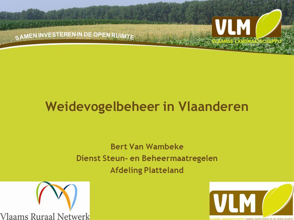 16-9-20141 Bert Van Wambeke Dienst Steun- en Beheermaatregelen Afdeling Platteland Weidevogelbeheer in Vlaanderen