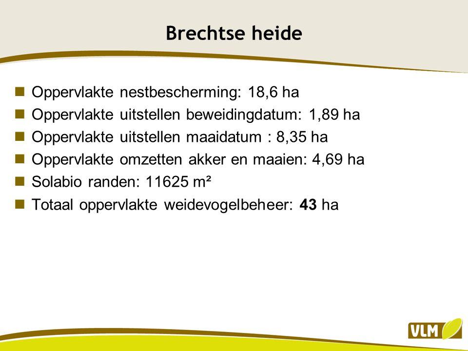 Brechtse heide Oppervlakte nestbescherming: 18,6 ha Oppervlakte uitstellen beweidingdatum: 1,89 ha Oppervlakte uitstellen maaidatum : 8,35 ha Oppervla