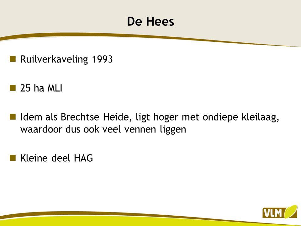 De Hees Ruilverkaveling 1993 25 ha MLI Idem als Brechtse Heide, ligt hoger met ondiepe kleilaag, waardoor dus ook veel vennen liggen Kleine deel HAG