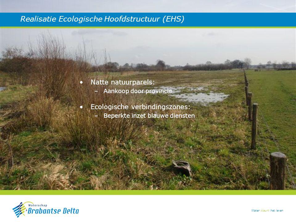 Water kleurt het leven Verbeteren waterkwaliteit Gezamenlijke proefprojecten: –Ook participatie lokale boeren Akkerrandenbeheer: –Succesvolle blauwe dienst