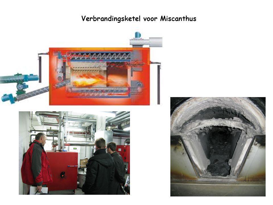 Verbrandingsketel voor Miscanthus