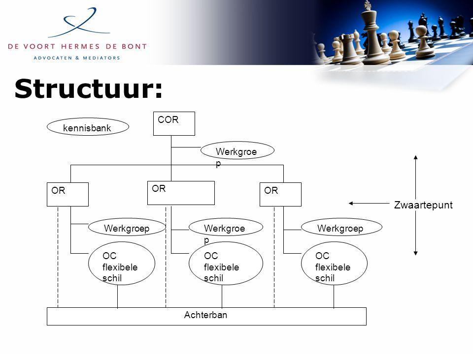 Structuur: kennisbank COR Werkgroe p OR Werkgroep Achterban OC flexibele schil Zwaartepunt