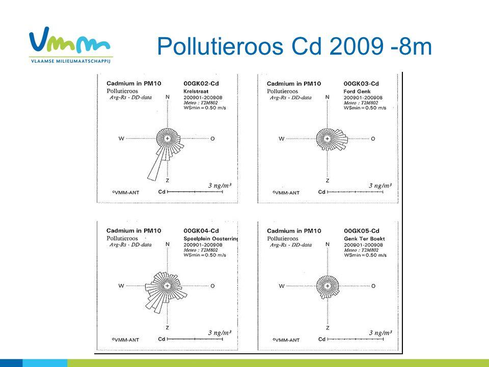 Pollutieroos Cd 2009 -8m