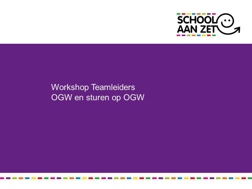 Workshop Teamleiders OGW en sturen op OGW