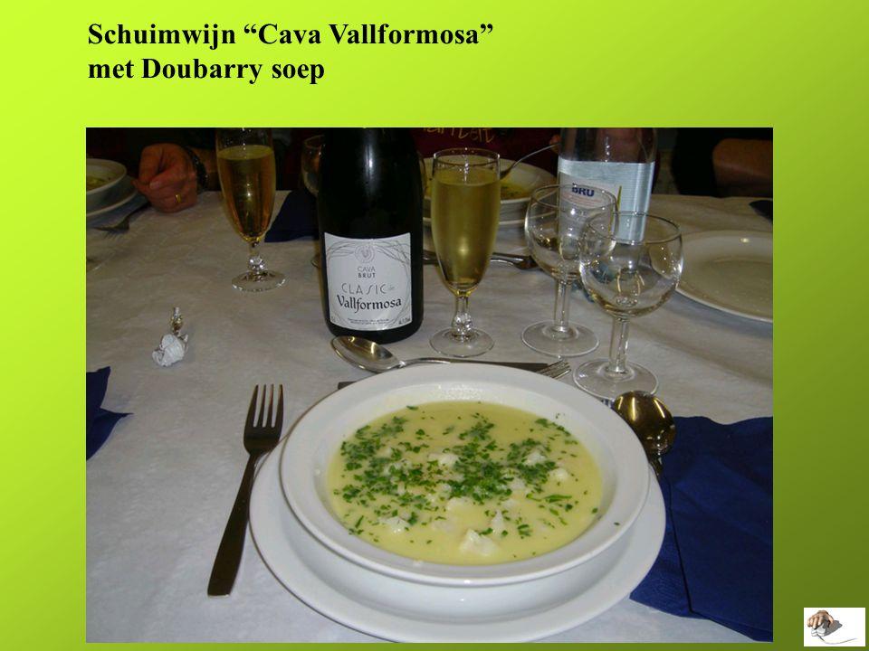 Schuimwijn Cava Vallformosa met Doubarry soep