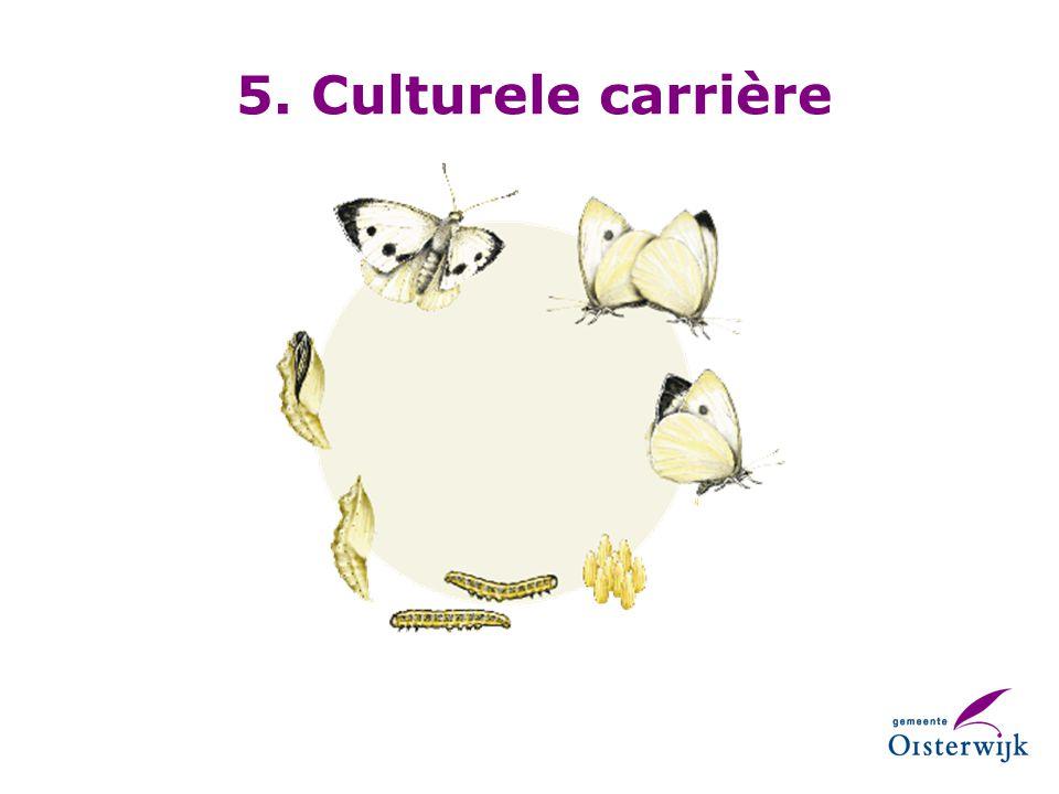 5. Culturele carrière