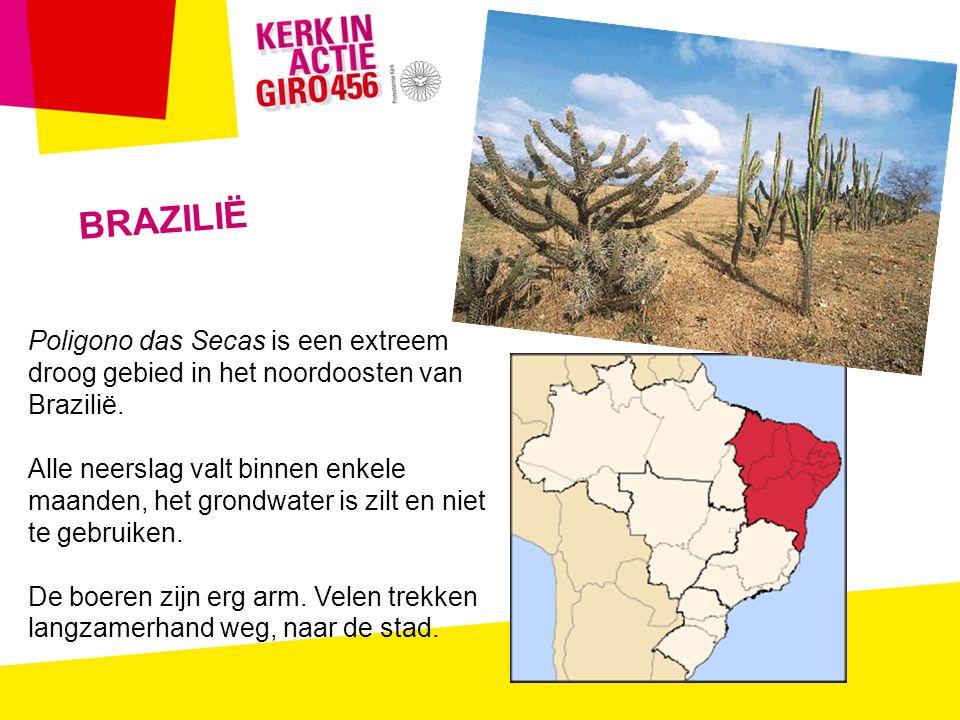BRAZILIË Poligono das Secas is een extreem droog gebied in het noordoosten van Brazilië.