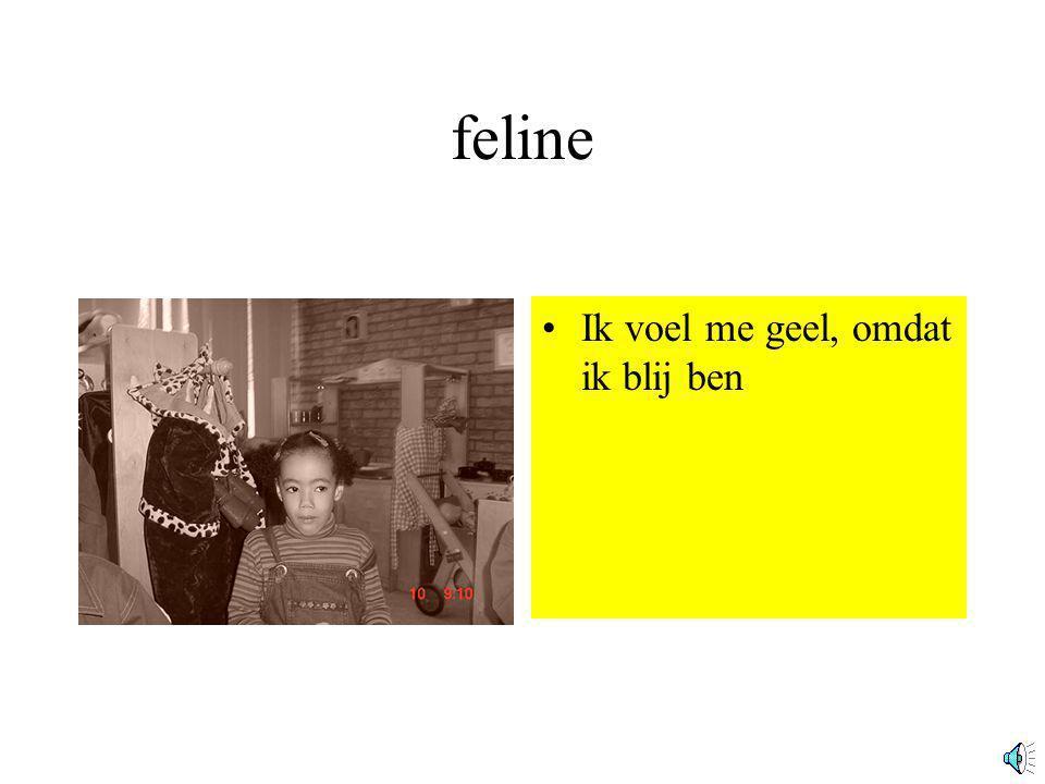 feline Ik voel me geel, omdat ik blij ben