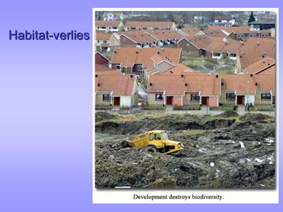Habitat-verlies