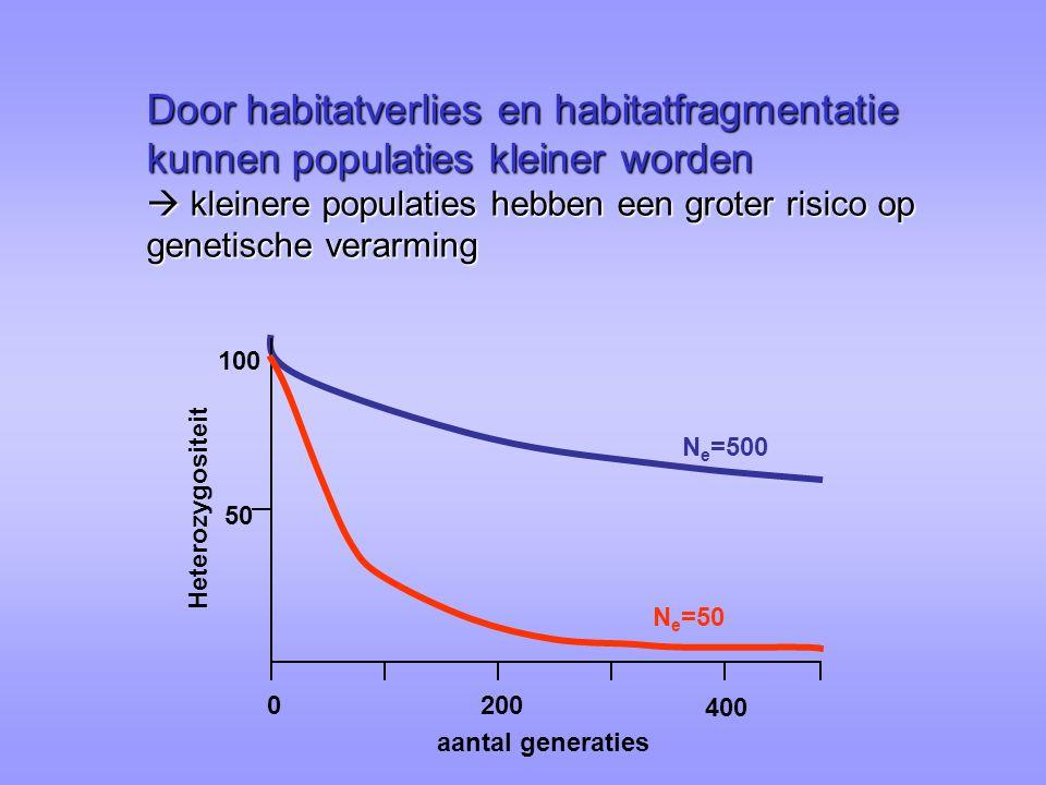Door habitatverlies en habitatfragmentatie kunnen populaties kleiner worden  kleinere populaties hebben een groter risico op genetische verarming 0200 400 Heterozygositeit aantal generaties N e =500 100 50 N e =50