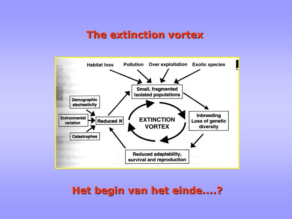The extinction vortex Het begin van het einde....?