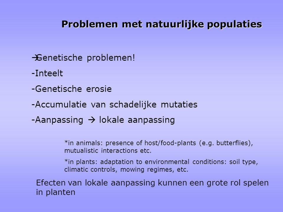  Genetische problemen! -Inteelt -Genetische erosie -Accumulatie van schadelijke mutaties -Aanpassing  lokale aanpassing *in animals: presence of hos