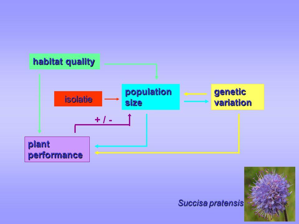 Succisa pratensis population size habitat quality genetic variation plant performance isolatie + / -