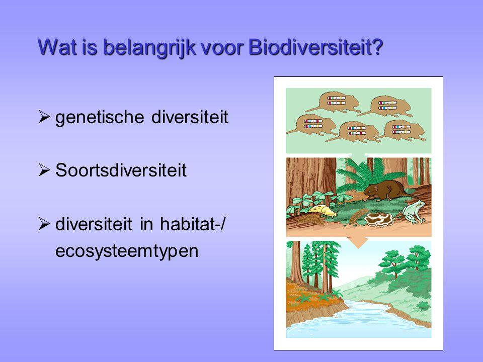 Wat is belangrijk voor Biodiversiteit?  genetische diversiteit  Soortsdiversiteit  diversiteit in habitat-/ ecosysteemtypen