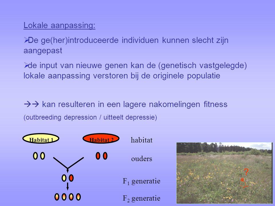 Lokale aanpassing:  De ge(her)introduceerde individuen kunnen slecht zijn aangepast  de input van nieuwe genen kan de (genetisch vastgelegde) lokale