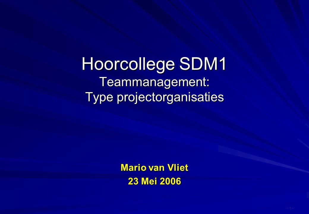 Hoorcollege SDM1 Teammanagement: Type projectorganisaties - 1 - Mario van Vliet 23 Mei 2006