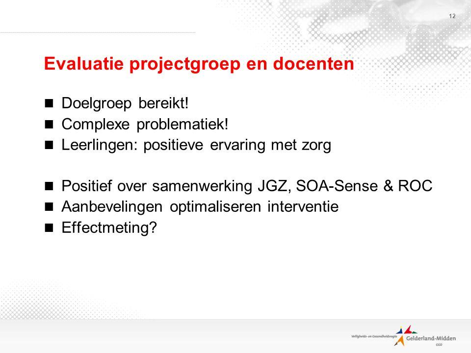 12 Evaluatie projectgroep en docenten Doelgroep bereikt.