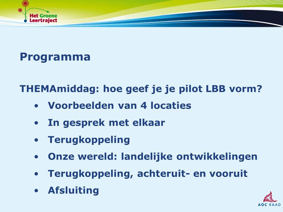 Programma THEMAmiddag: hoe geef je je pilot LBB vorm.