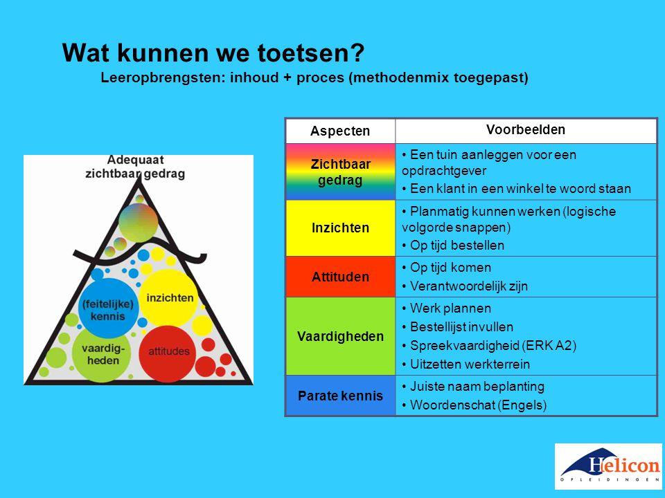 Wat kunnen we toetsen? Leeropbrengsten: inhoud + proces (methodenmix toegepast) Aspecten Voorbeelden Zichtbaar gedrag Een tuin aanleggen voor een opdr