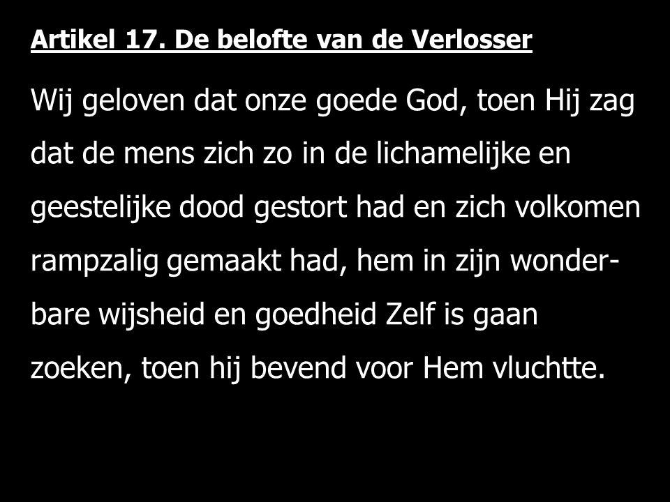 Artikel 17.