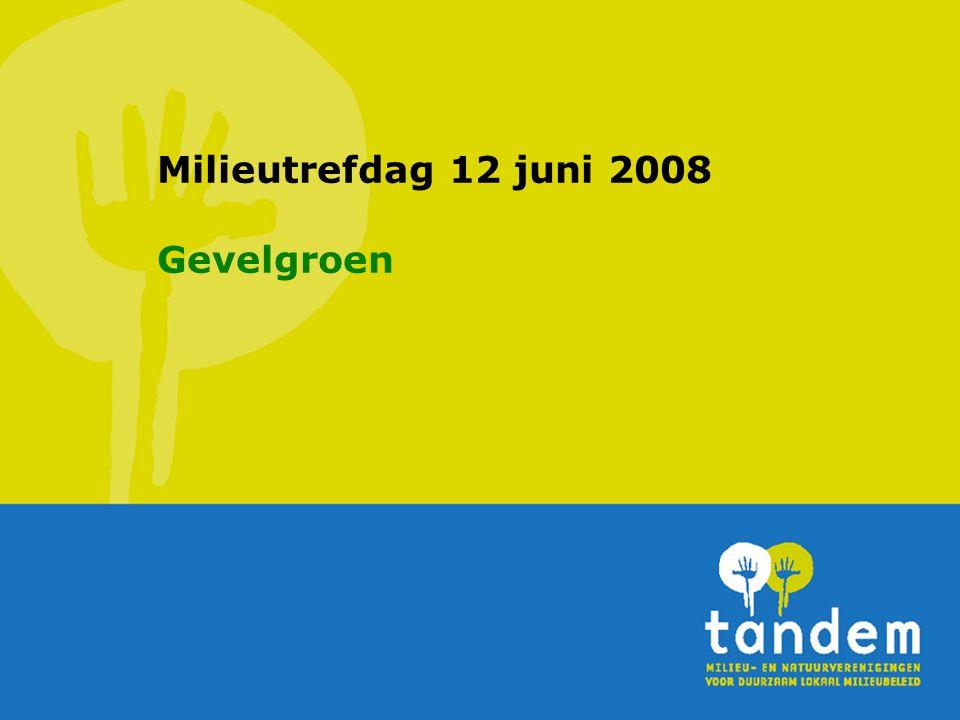Milieutrefdag 12 juni 2008 Gevelgroen