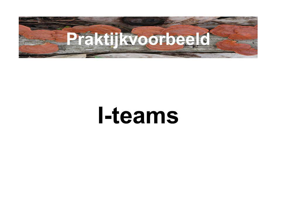 I-teams Praktijkvoorbeeld