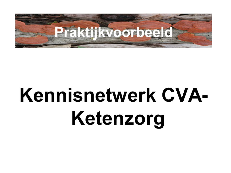 Kennisnetwerk CVA- Ketenzorg Praktijkvoorbeeld