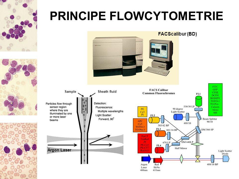 PRINCIPE FLOWCYTOMETRIE FACScalibur (BD) Argon Laser Sheath fluidSample