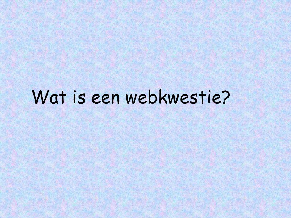 Wat is een webkwestie?