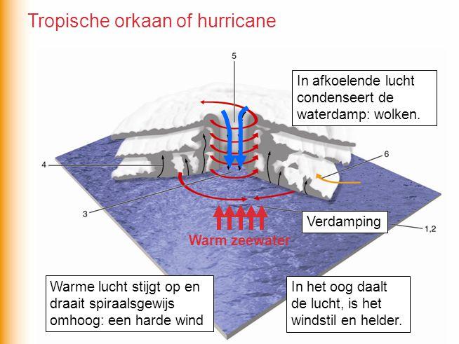 Warm zeewater Warme lucht stijgt op en draait spiraalsgewijs omhoog: een harde wind In afkoelende lucht condenseert de waterdamp: wolken. In het oog d