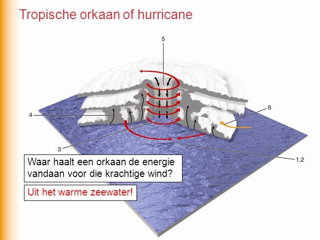 Waar haalt een orkaan de energie vandaan voor die krachtige wind? Uit het warme zeewater! Tropische orkaan of hurricane