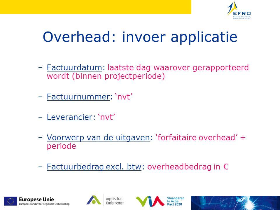Overhead: invoer applicatie –Factuurdatum: laatste dag waarover gerapporteerd wordt (binnen projectperiode) –Factuurnummer: 'nvt' –Leverancier: 'nvt'