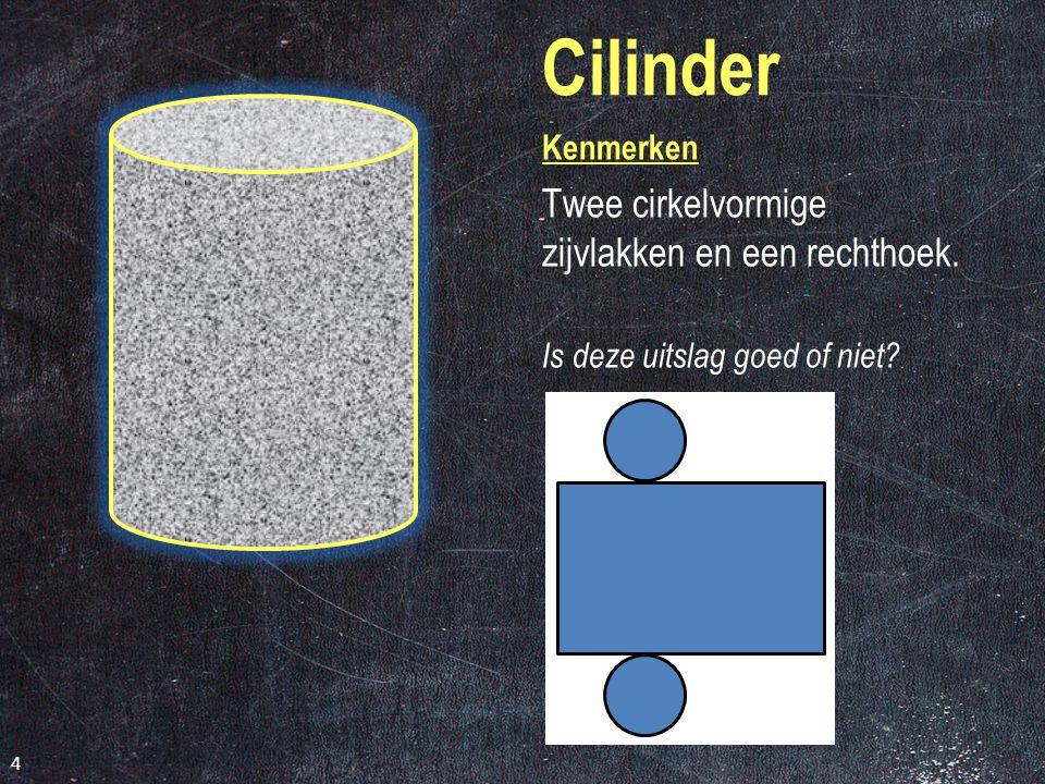 Balk Kenmerken Elk zijvlak is een rechthoek. Is deze uitslag goed of niet? 3