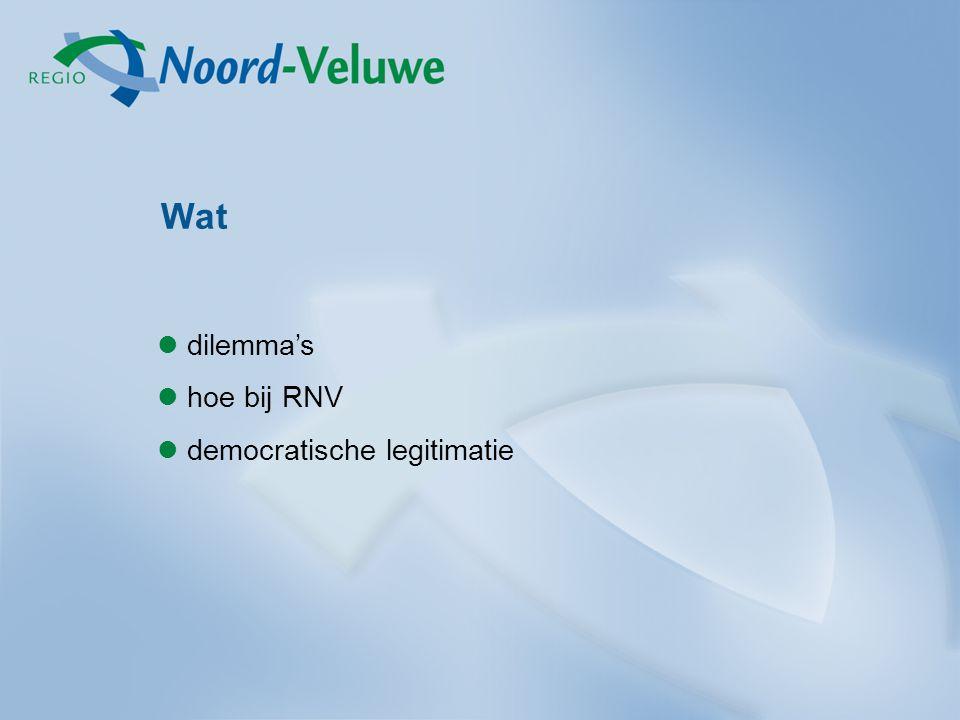 Wat dilemma's hoe bij RNV democratische legitimatie