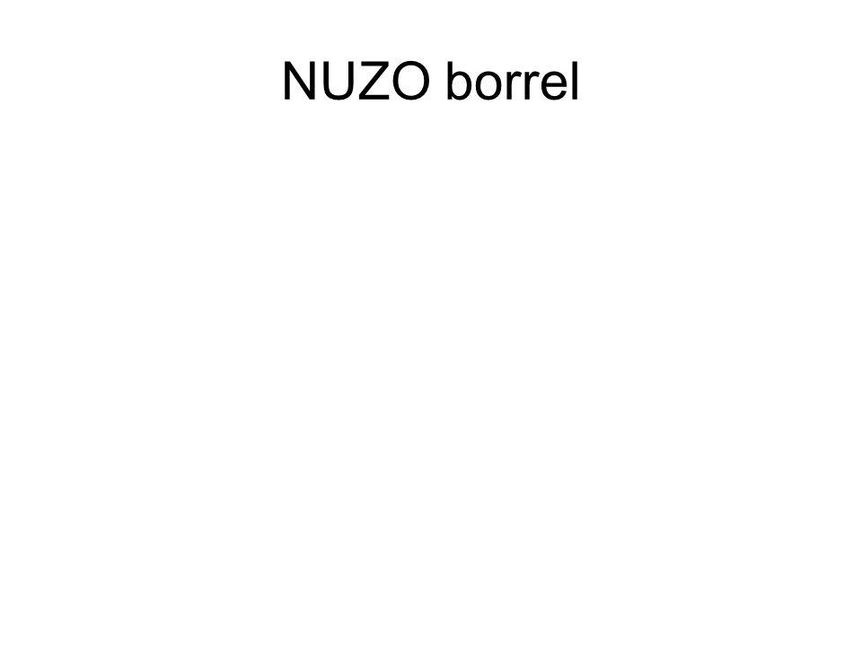 NUZO borrel