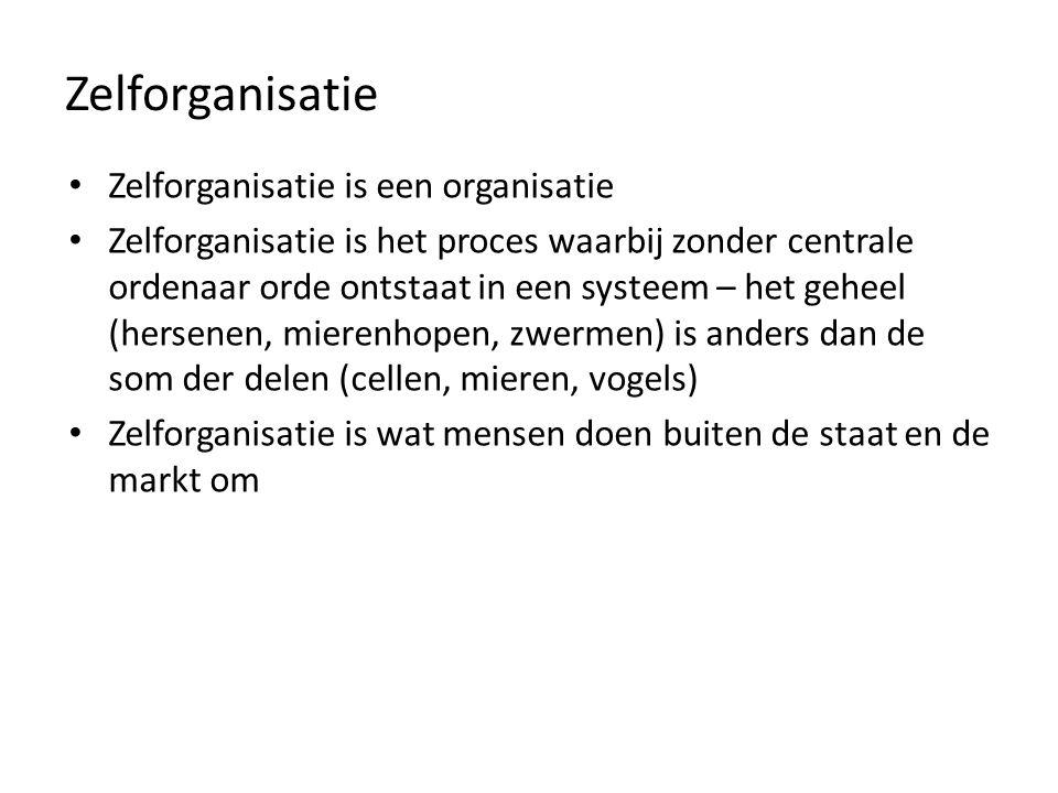 Zelforganisatie Zelforganisatie is een organisatie Zelforganisatie is het proces waarbij zonder centrale ordenaar orde ontstaat in een systeem – het g