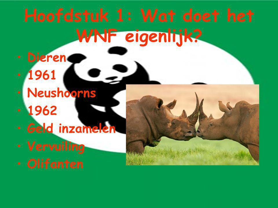 Hoofdstuk 1: Wat doet het WNF eigenlijk? Dieren 1961 Neushoorns 1962 Geld inzamelen Vervuiling Olifanten