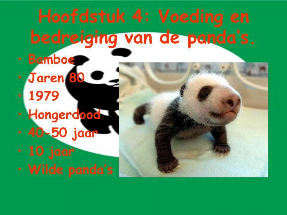 Hoofdstuk 4: Voeding en bedreiging van de panda's. Bamboe Jaren 80 1979 Hongerdood 40-50 jaar 10 jaar Wilde panda's