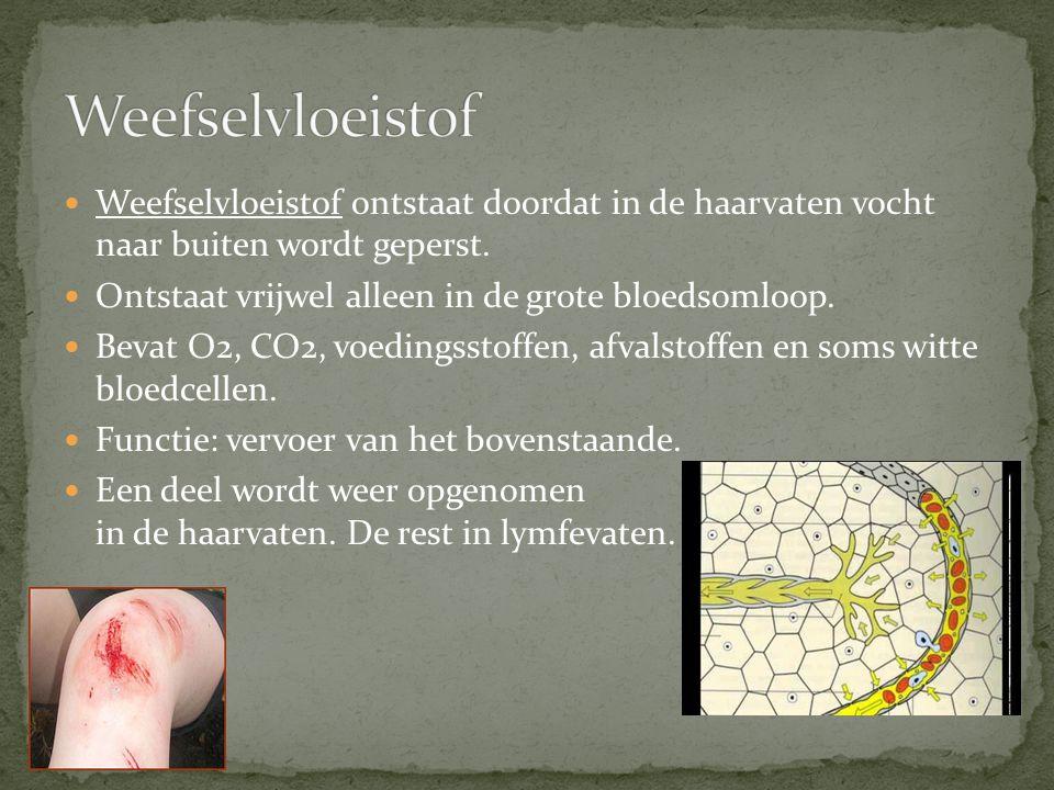 Weefselvloeistof ontstaat doordat in de haarvaten vocht naar buiten wordt geperst. Ontstaat vrijwel alleen in de grote bloedsomloop. Bevat O2, CO2, vo