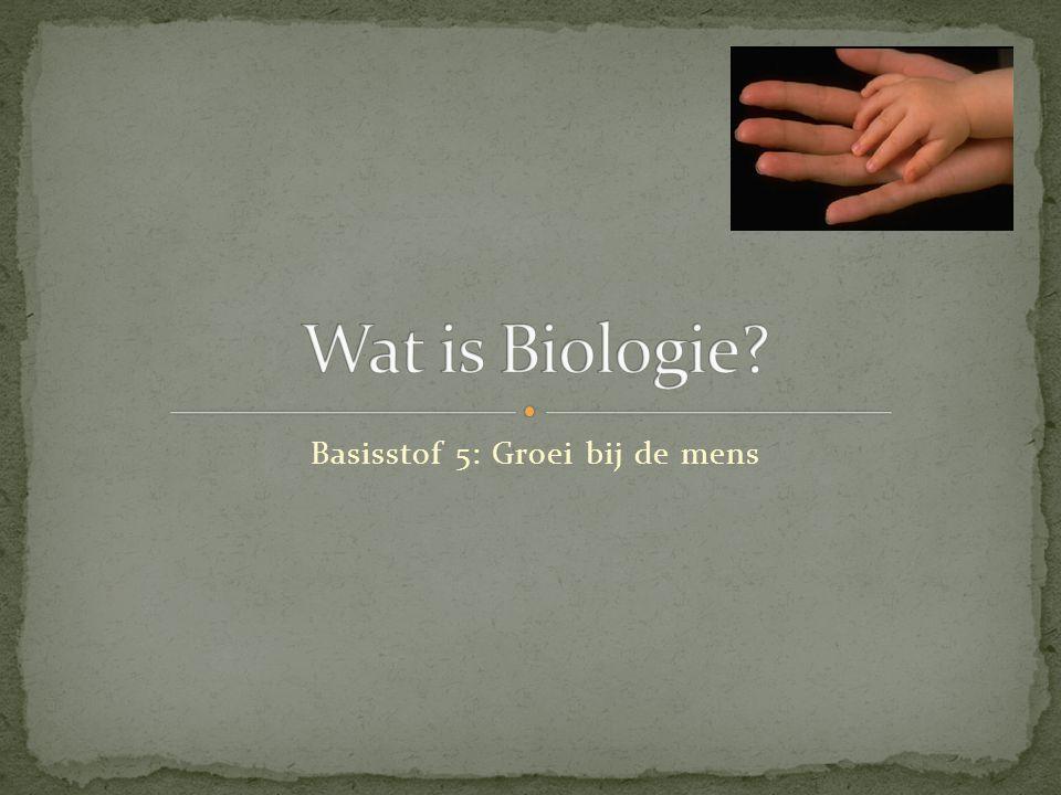 Een bacterie kun je het beste bekijken met een… A. Loep B. Vergrootglas C. Microscoop D. Telescoop