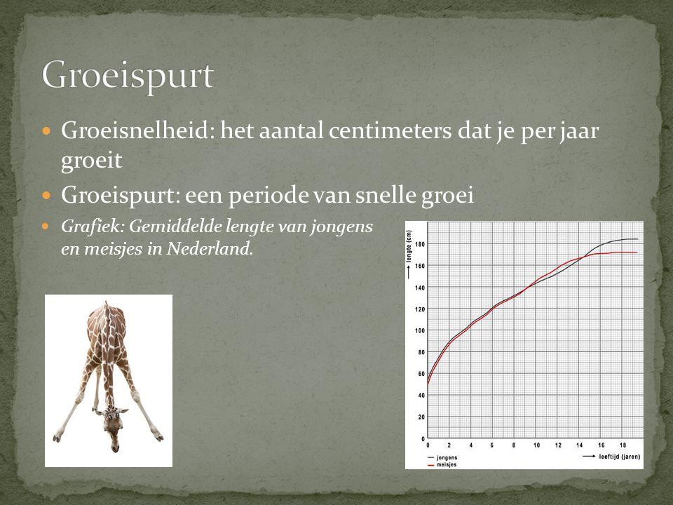 Groeisnelheid: het aantal centimeters dat je per jaar groeit Groeispurt: een periode van snelle groei Grafiek: Gemiddelde lengte van jongens en meisjes in Nederland.