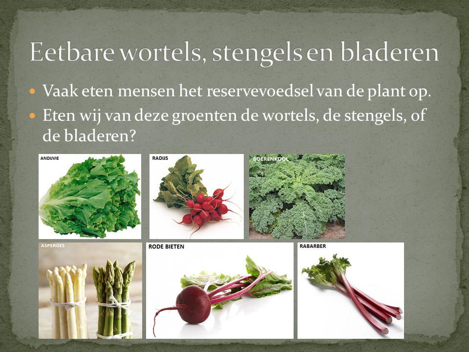 Vaak eten mensen het reservevoedsel van de plant op.