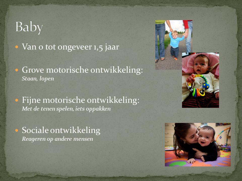 Van 0 tot ongeveer 1,5 jaar Grove motorische ontwikkeling: Staan, lopen Fijne motorische ontwikkeling: Met de tenen spelen, iets oppakken Sociale ontwikkeling Reageren op andere mensen